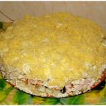 4466 Салат из курицы и картофеля с сыром и огурцами