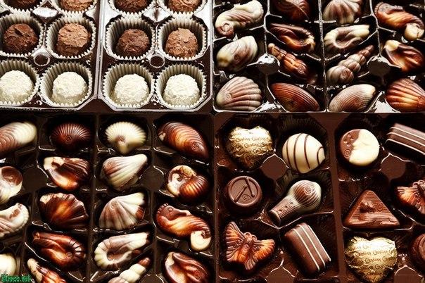 Шоколадные конфеты с ореховым пралине