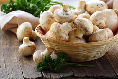 Употребление грибов поможет сбросить лишний вес