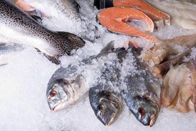 Эксперты считают, что россиянам следует перейти на северный рацион питания