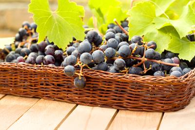 Китай стал лидером по производству и употреблению винограда