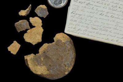 Печенье с Трафальгарского сражения выставлено на аукцион