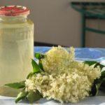 16870 Рецепт Сироп из цветов бузины
