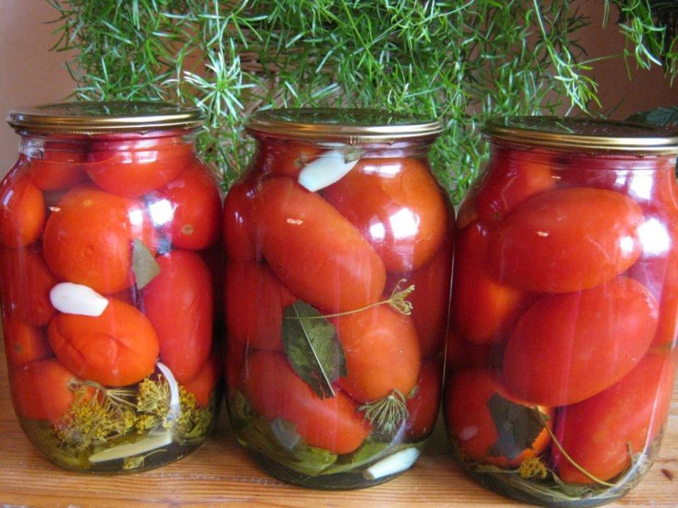 18078 Соленые помидоры
