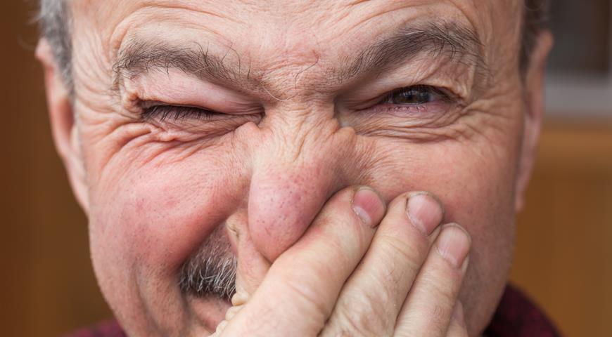 18181 Как победить запах старости при помощи шампиньонов. И другие полезные свойства этих грибов