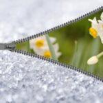 19190 Какой будет желанная весна 2021 года? Определяем весеннюю погоду 1 февраля