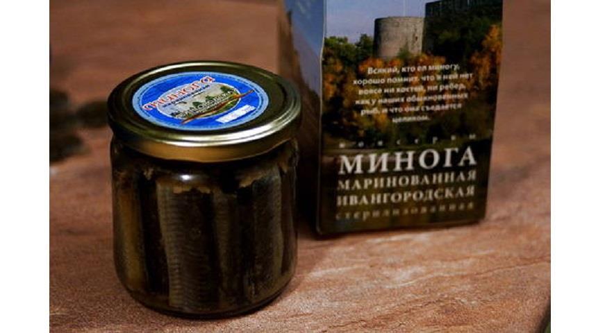 Минога из Ивангорода. Почему в Петербурге любят страшную рыбу без костей
