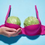 19627 Правда ли, что от капусты может увеличиться грудь?